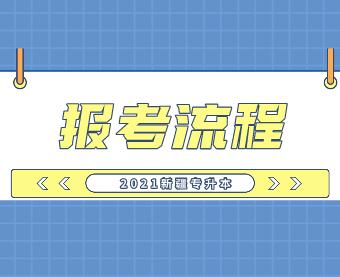 2021新疆专升本报考流程