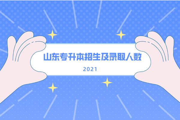 2021年山东专升本招生及录取人数统计分析!
